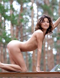 Naturally Beautiful Amateur Nudes